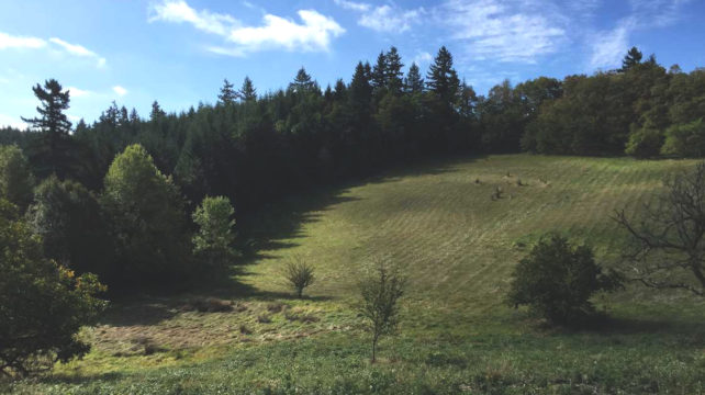 north tualatin mountains